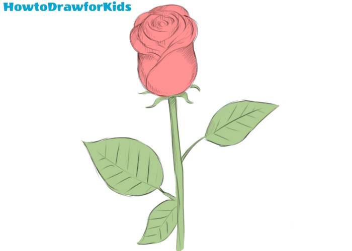 How To Draw A Rose Easy How To Draw For Kids